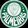 Imagem representativa - Palmeiras
